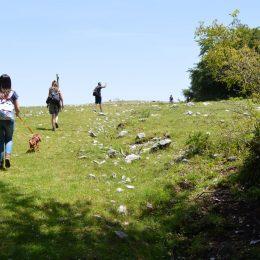 http://www.canbridge.it/sito/passeggiata-a-6-zampe-escursione-camposauro/