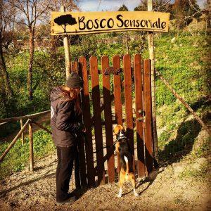 🎊🎉🌳 #buoncompleanno Rocco!!! Quale miglior modo di festeggiare se non con una bellissima #passeggiata nel #boscosensoriale  Peró dacci almeno il tempo di aprirti la porta 😂😂😂  #boscourbano #ariapulita #napoligreen #bellegiornate #canifelici #dogtracking #dogwalking