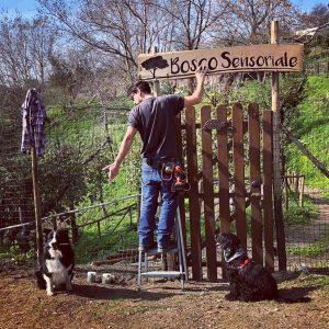 🌳🌞Un #giornodisole , un paio di aiutanti eccezionali e il #boscosensoriale continua a prendere forma 😍  #boscourbano #napoligreen #canifelici #dogwalking #dogtracking